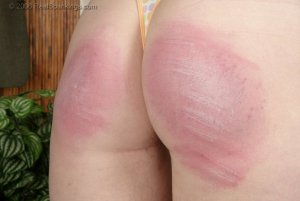 Real Spankings - School Strokes: Brooke - image 11