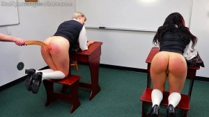 Real Spankings Institute - Spanked Together (part 2 Of 4) - image 3
