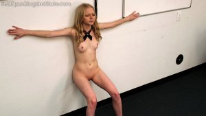 Real Spankings Institute - Alice's Embarrassing Punishment From The Dean - image 6