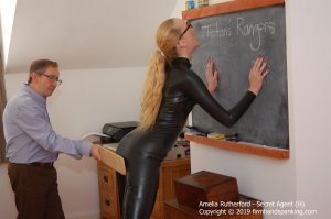 Firm Hand Spanking - Secret Agent - H - image 11