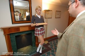 Firm Hand Spanking - Diva Bodyguard - F - image 5