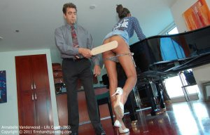Firm Hand Spanking - Life Coach - Bg - image 8
