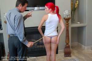 Firm Hand Spanking - Diva Trainer - E - image 12