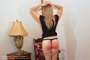 Firm Hand Spanking - Executive Privilege - D - image 8