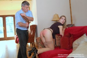 Firm Hand Spanking - Executive Privilege - D - image 11