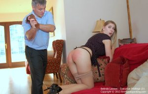 Firm Hand Spanking - Executive Privilege - D - image 10