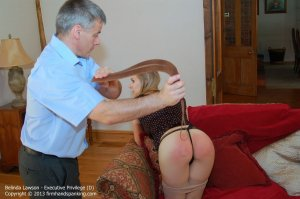 Firm Hand Spanking - Executive Privilege - D - image 9