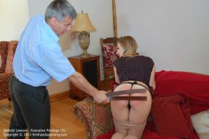 Firm Hand Spanking - Executive Privilege - D - image 17