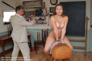 Firm Hand Spanking - Legal Penalties - Be - image 2