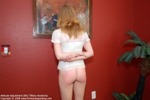 Firm Hand Spanking - Attitude Adjustment - Ba - image 11