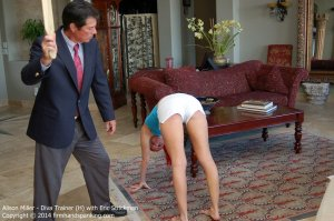 Firm Hand Spanking - Diva Trainer - H - image 5