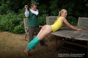 Firm Hand Spanking - Princess Punnishment - D - image 5