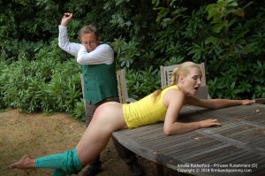 Firm Hand Spanking - Princess Punnishment - D - image 3