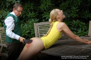 Firm Hand Spanking - Princess Punnishment - D - image 14