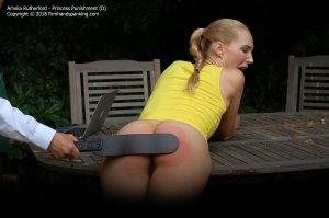 Firm Hand Spanking - Princess Punnishment - D - image 9