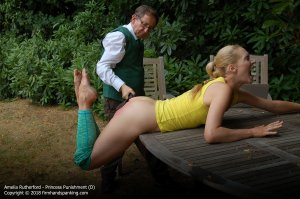 Firm Hand Spanking - Princess Punnishment - D - image 15