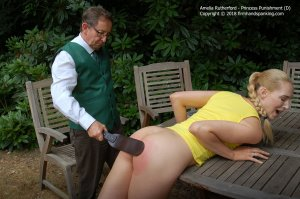 Firm Hand Spanking - Princess Punnishment - D - image 11