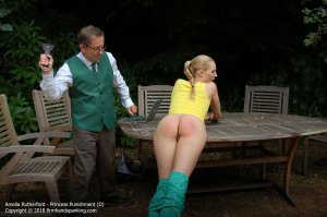 Firm Hand Spanking - Princess Punnishment - D - image 12