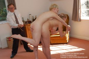 Firm Hand Spanking - Reform Academy - Dk - image 1