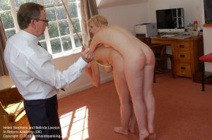 Firm Hand Spanking - Reform Academy - Dk - image 8