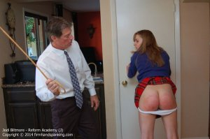 Firm Hand Spanking - Reform Academy - J - image 16