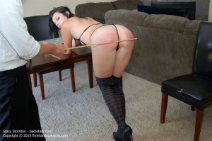 Firm Hand Spanking - Secretary - Bd - image 12