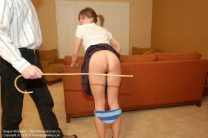 Firm Hand Spanking - The Interventionist - I - image 8