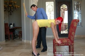 Firm Hand Spanking - Diva Trainer - L - image 6