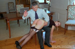 Firm Hand Spanking - Executive Privilege - B - image 3