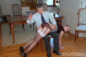 Firm Hand Spanking - Executive Privilege - B - image 5