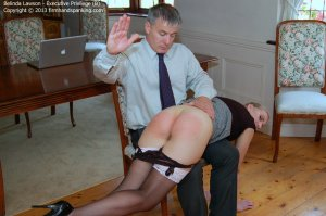 Firm Hand Spanking - Executive Privilege - B - image 4