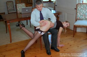 Firm Hand Spanking - Executive Privilege - B - image 1