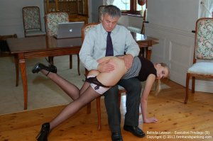 Firm Hand Spanking - Executive Privilege - B - image 8