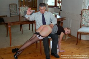 Firm Hand Spanking - Executive Privilege - B - image 14
