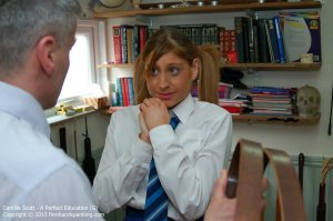Firm Hand Spanking - A Perfect Education - G - image 4