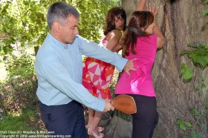 Firm Hand Spanking - Club Class - G - image 14