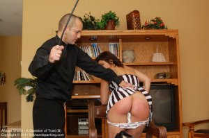Firm Hand Spanking - A Question Of Trust - B - image 9