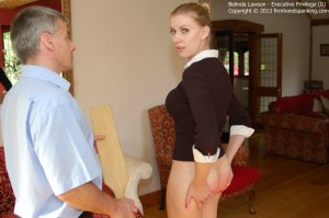 Firm Hand Spanking - Executive Privilege - G - image 3