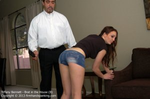 Firm Hand Spanking - Brat In The House - B - image 8