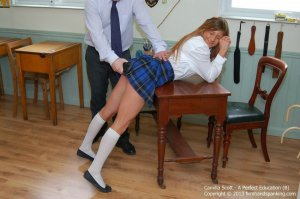 Firm Hand Spanking - A Perfect Education - B - image 5