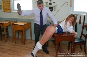Firm Hand Spanking - A Perfect Education - B - image 7