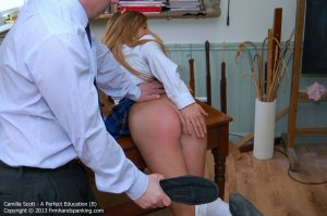 Firm Hand Spanking - A Perfect Education - B - image 6