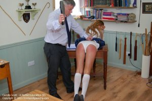 Firm Hand Spanking - A Perfect Education - B - image 3