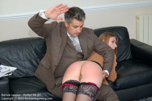 Firm Hand Spanking - Perfect Pa - A - image 14
