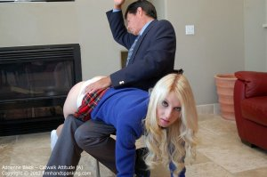 Firm Hand Spanking - Catwalk Attitude - A - image 17