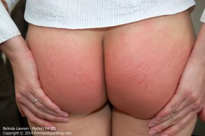 Firm Hand Spanking - Perfect Pa - C - image 14
