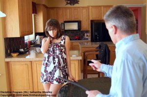 Firm Hand Spanking - Discipline Program - Bg - image 1