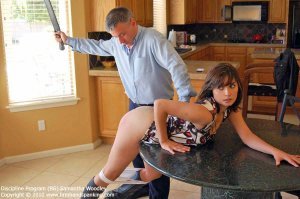 Firm Hand Spanking - Discipline Program - Bg - image 5
