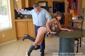 Firm Hand Spanking - Discipline Program - Bg - image 7
