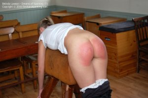 Firm Hand Spanking - Dreams Of Spanking - D - image 14